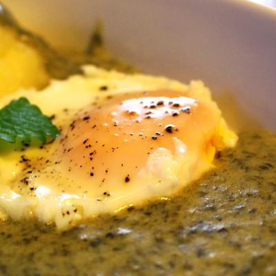 Šťaveľová (štiavová) omáčka s volským okom a zemiakovou kašou